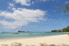 beach bain boeuf good